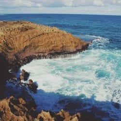 Wanderer Financial Stock Trading Newsletter - Puerto Rico